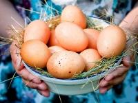 Деревенское яйцо – натуральный продукт