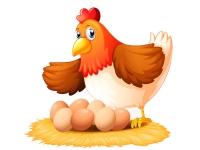 Берестовицкая птицефабрика: гарантия Вашего здоровья!