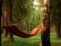 Посвятите долгожданные дни «бабьего лета» хорошему отдыху!