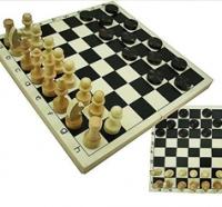 Профессиональное обучение шахматам и шашкам